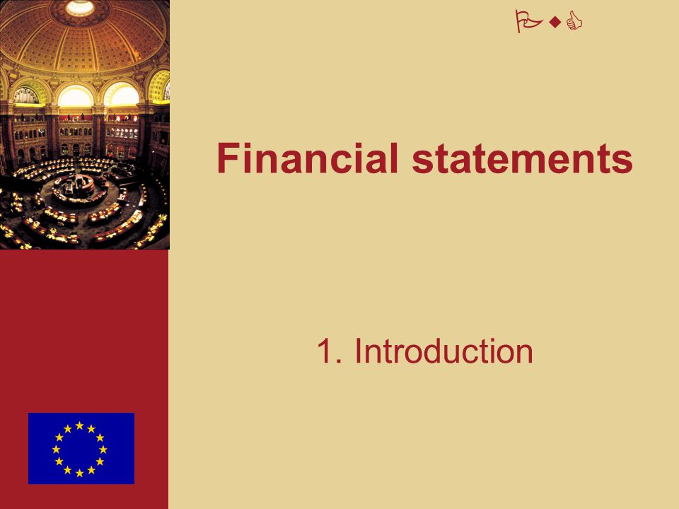 Financial statements 1. Introduction