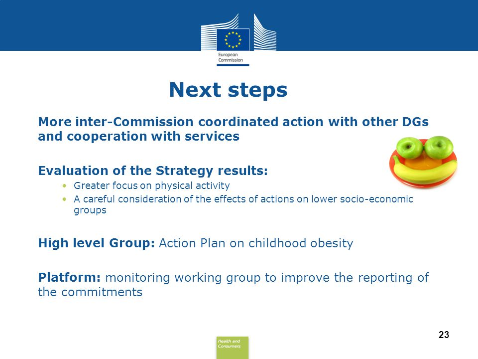 Next steps More inter-Commission coordinated action with other DGs and cooperation with services. Evaluation of the Strategy results: