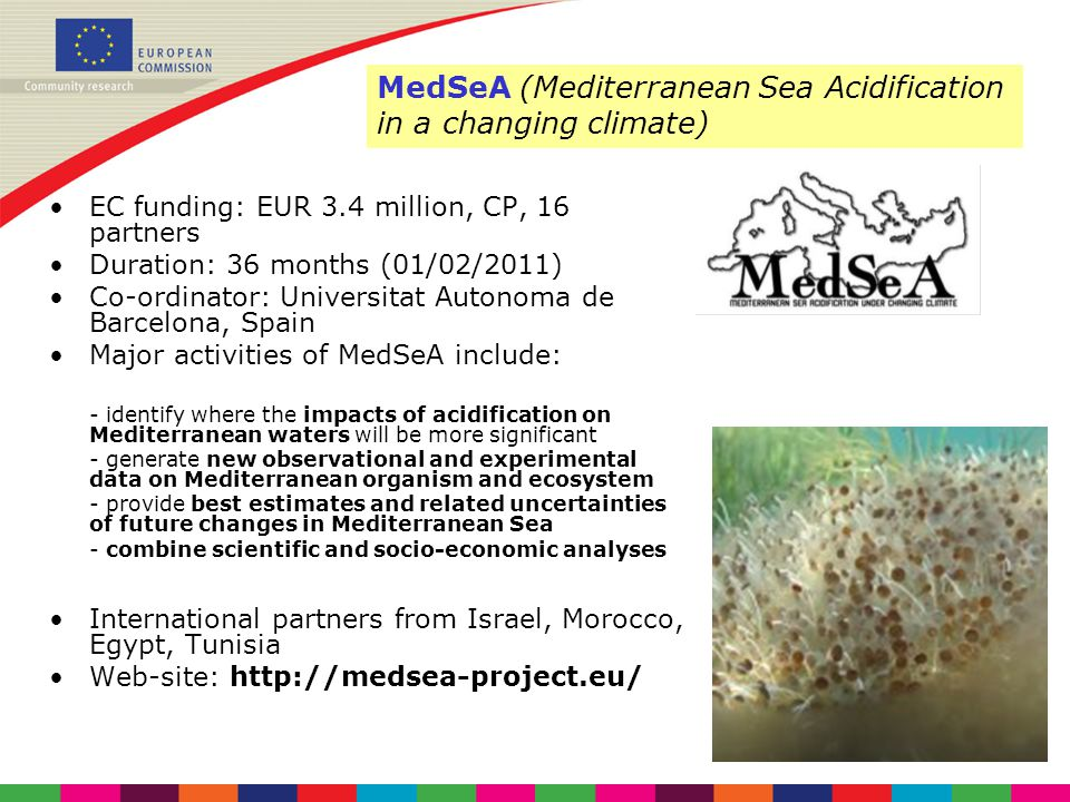 MedSeA (Mediterranean Sea Acidification in a changing climate)