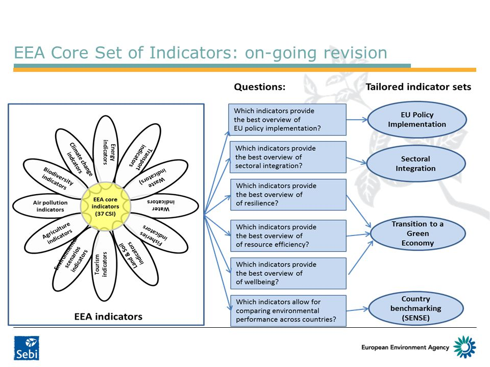 EEA Core Set of Indicators: on-going revision