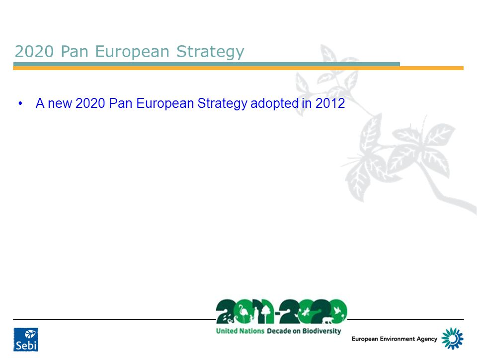 2020 Pan European Strategy A new 2020 Pan European Strategy adopted in 2012