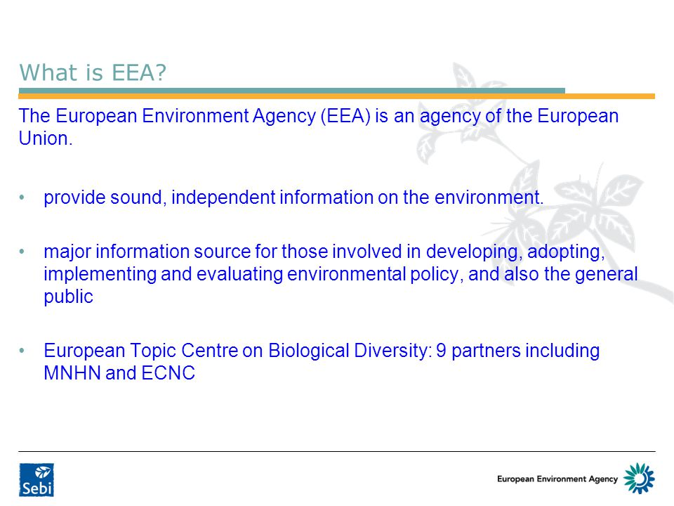 What is EEA The European Environment Agency (EEA) is an agency of the European Union. provide sound, independent information on the environment.