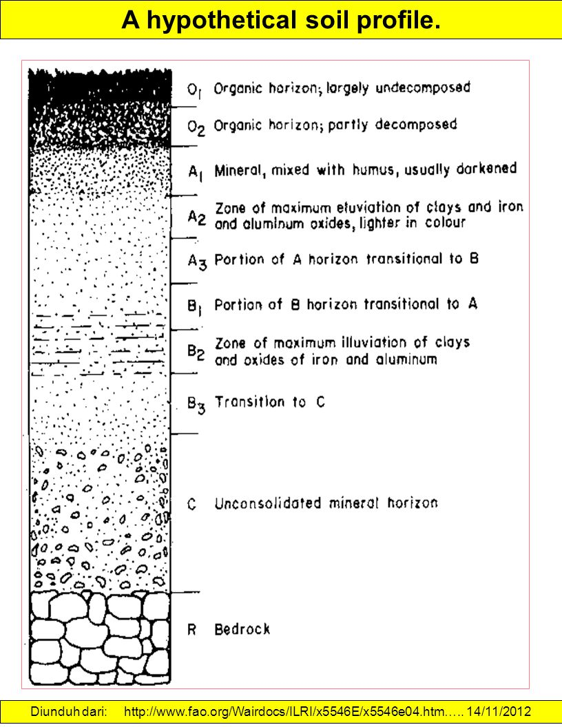 A hypothetical soil profile.
