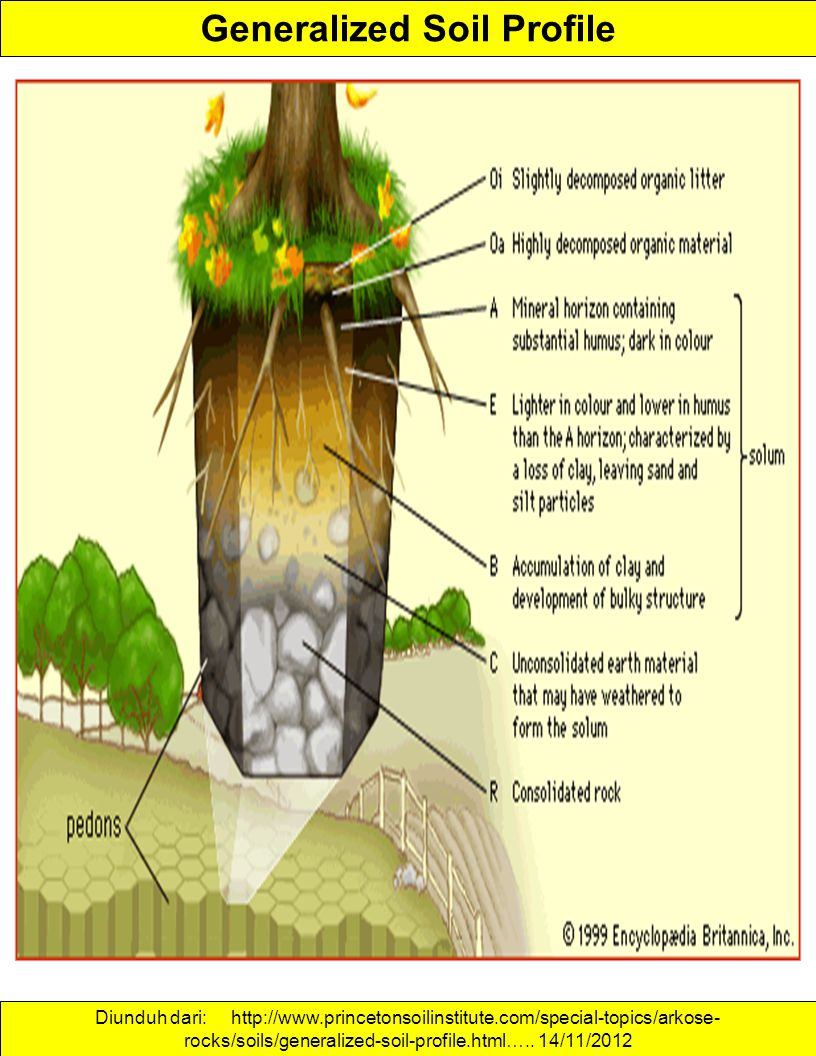 Generalized Soil Profile