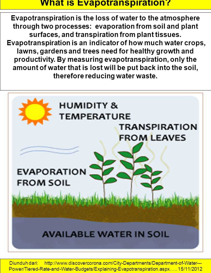 What is Evapotranspiration