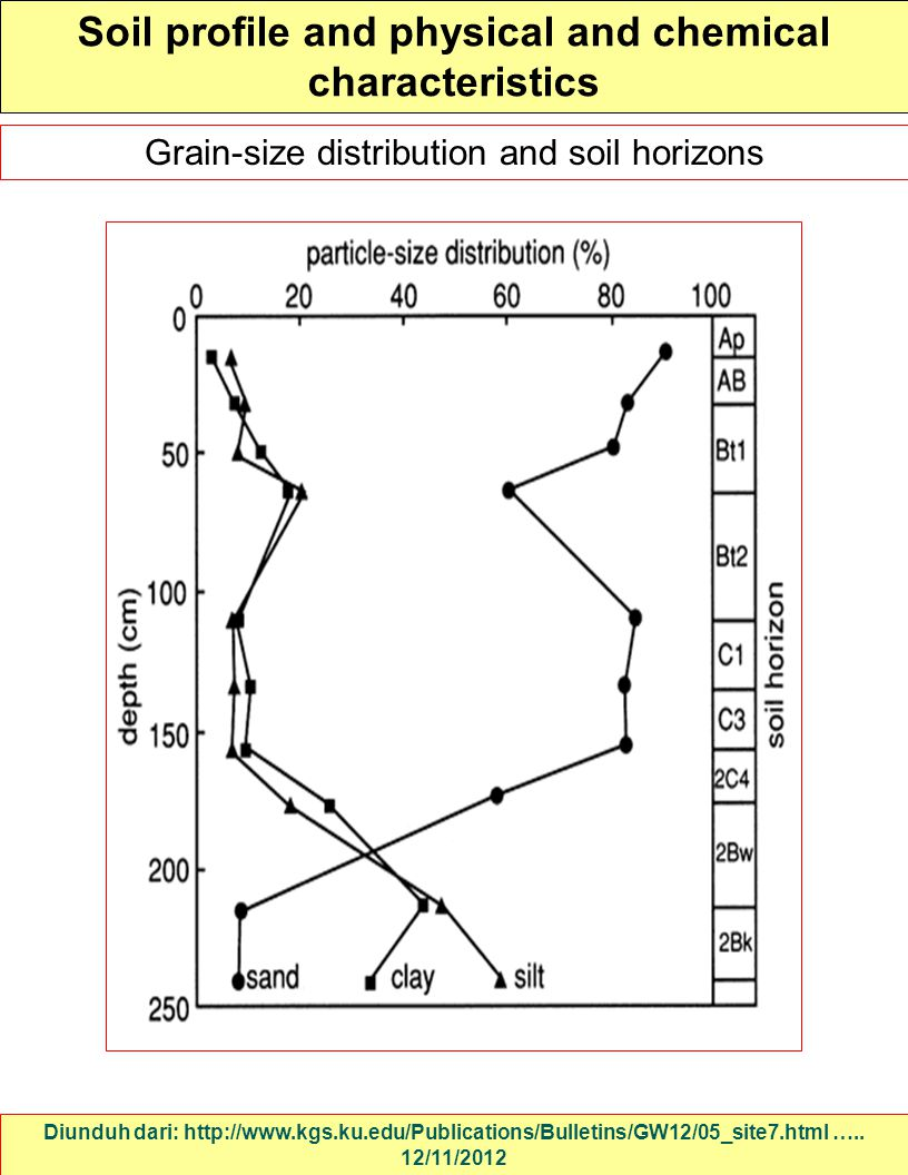 Soil profile and physical and chemical characteristics
