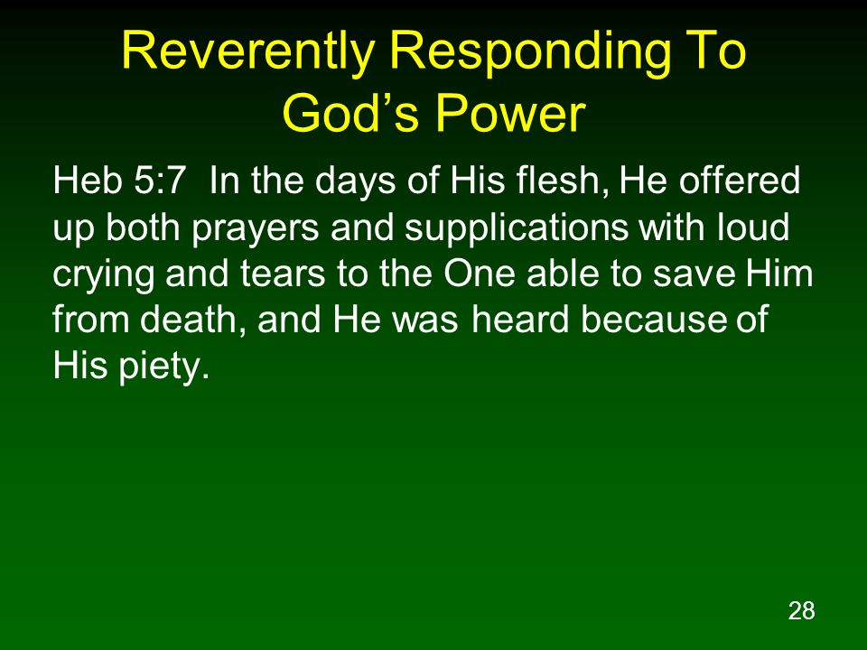 Reverently Responding To God's Power