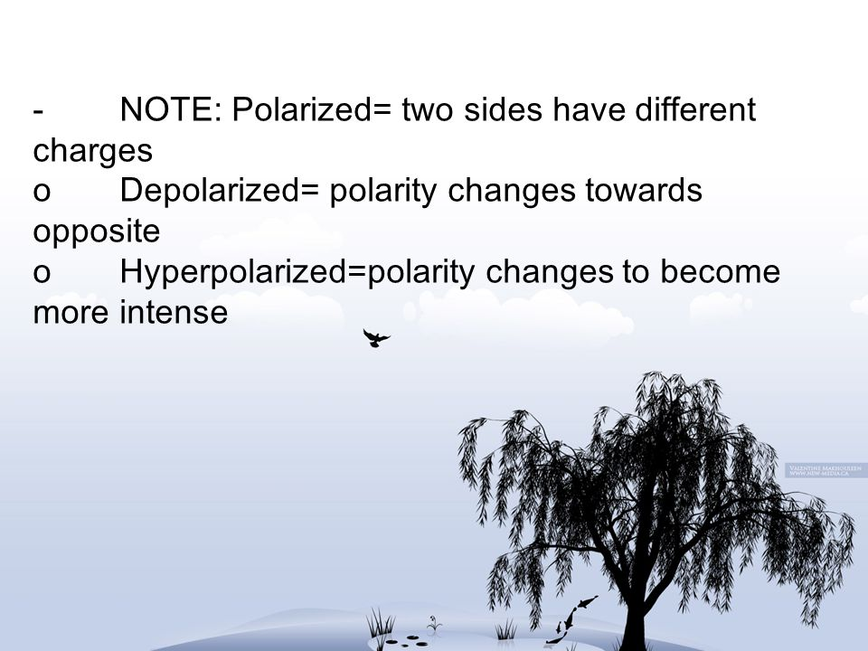 -. NOTE: Polarized= two sides have different charges o