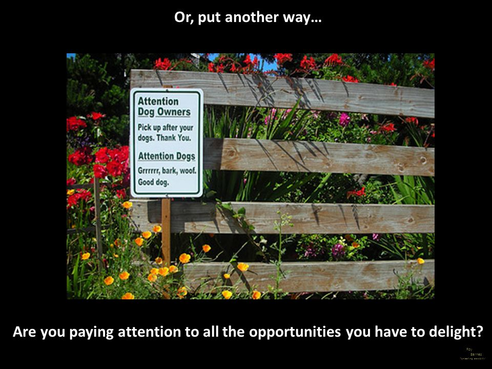 Are you paying attention to all the opportunities you have to delight