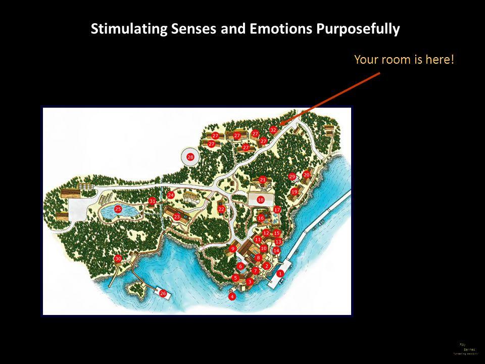Stimulating Senses and Emotions Purposefully