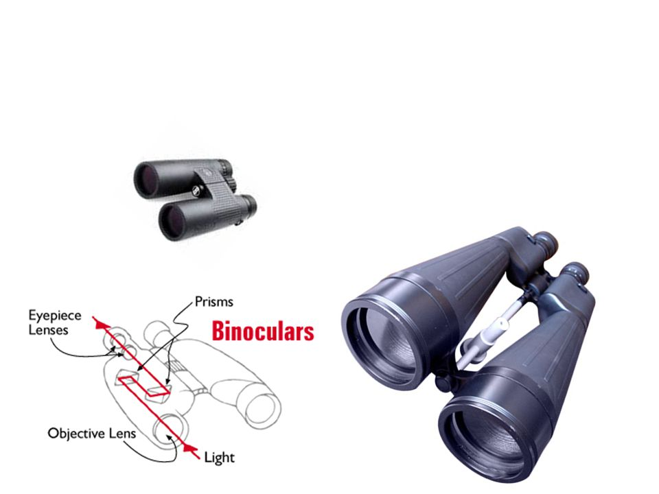 binoculars are great for seeing things on Earth and in the sky
