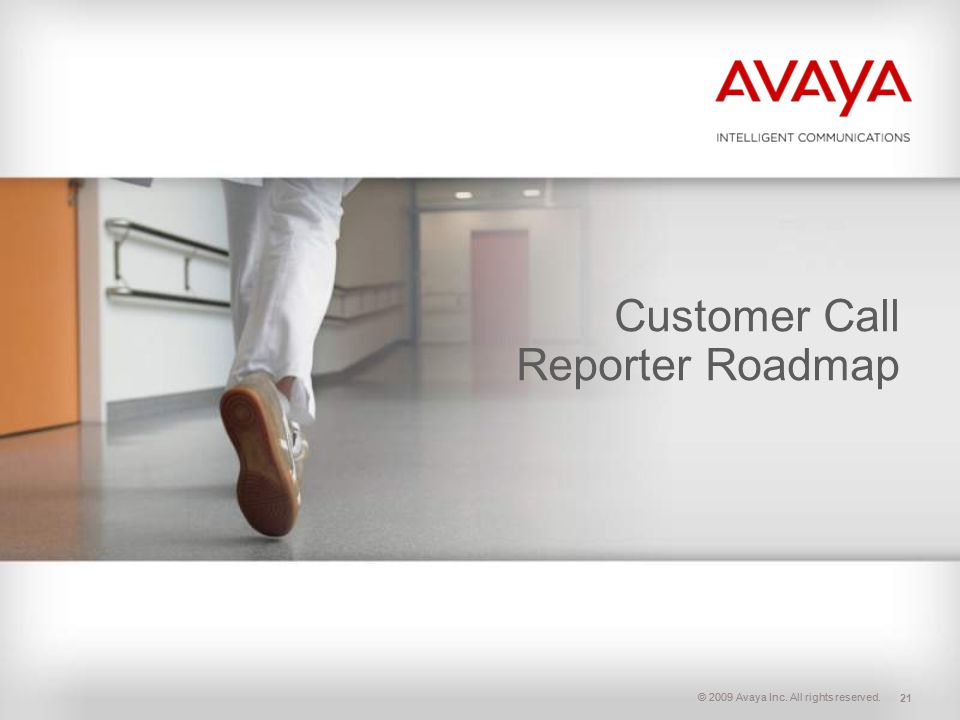 Customer Call Reporter Roadmap