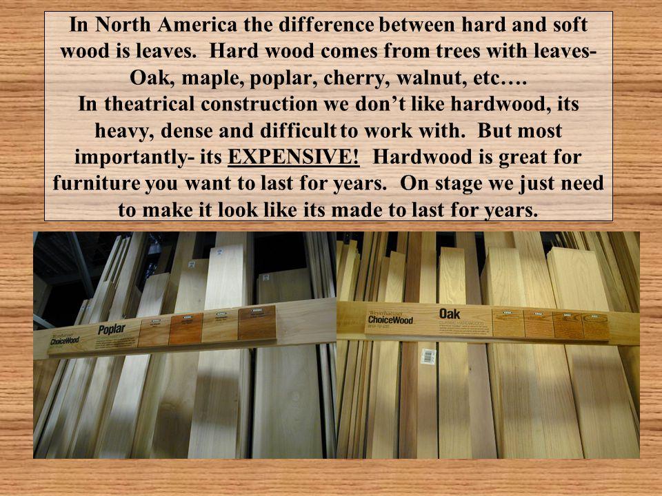 In North America the difference between hard and soft wood is leaves