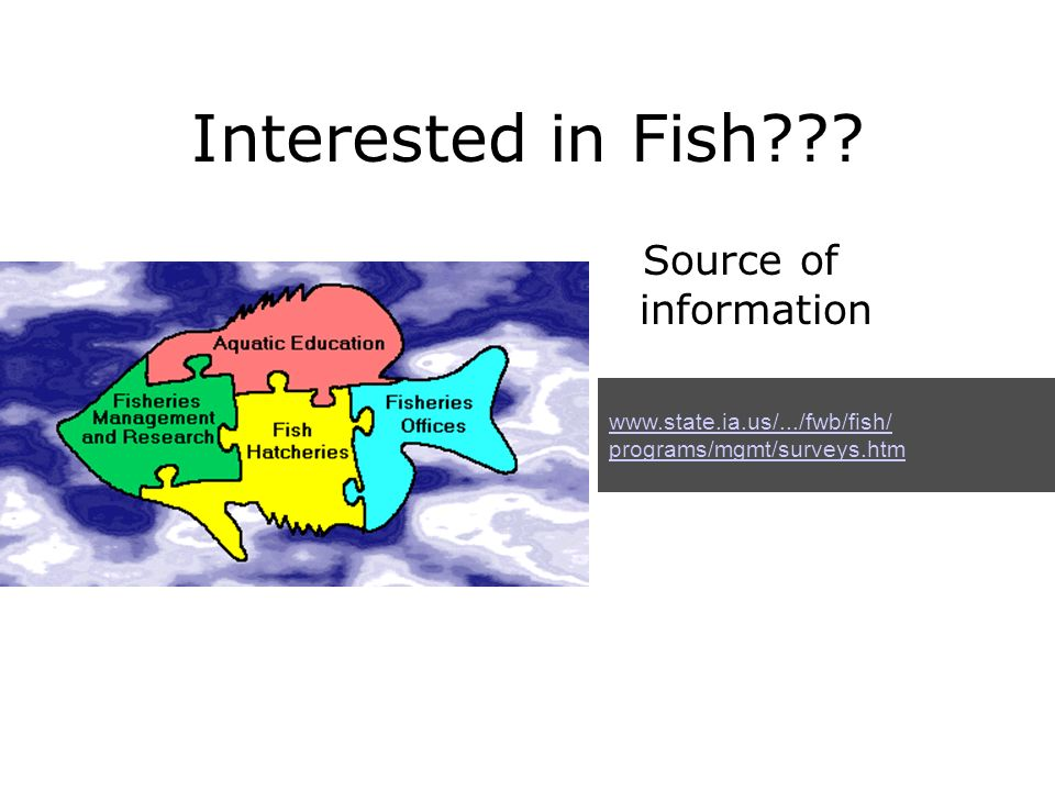 Interested in Fish Source of information