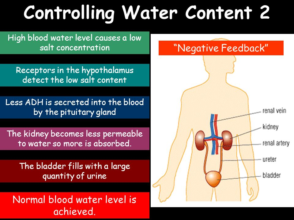 Controlling Water Content 2