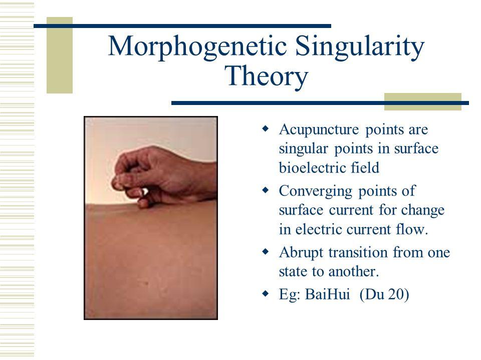 Morphogenetic Singularity Theory