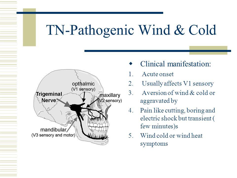 TN-Pathogenic Wind & Cold