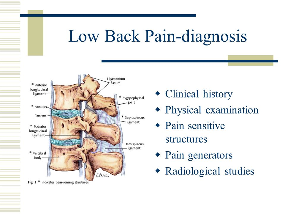 Low Back Pain-diagnosis