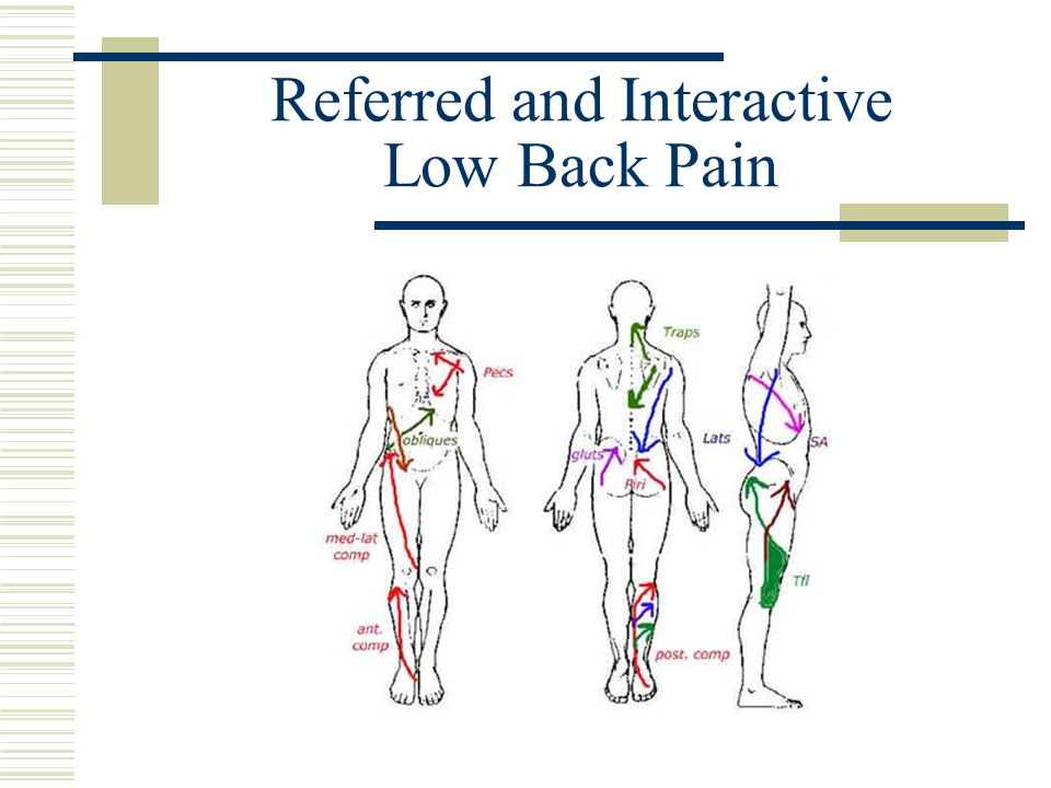 Referred and Interactive Low Back Pain