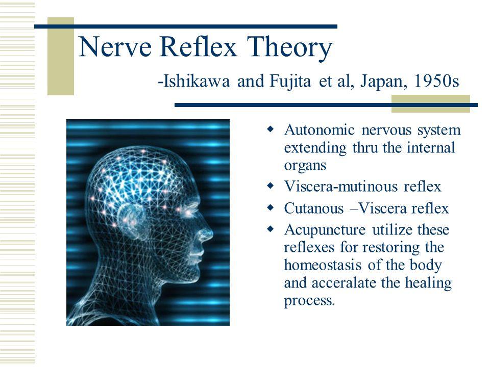 Nerve Reflex Theory -Ishikawa and Fujita et al, Japan, 1950s