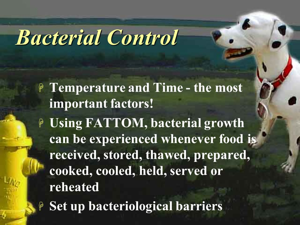 Bacterial Control Temperature and Time - the most important factors!