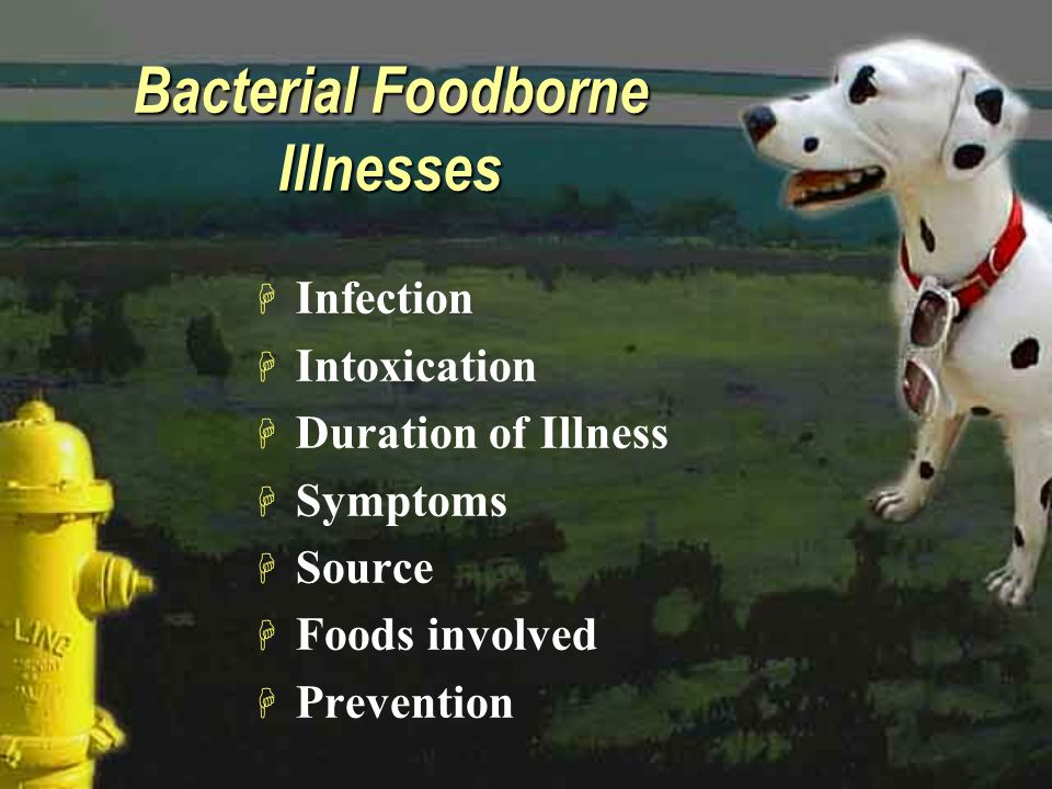 Bacterial Foodborne Illnesses