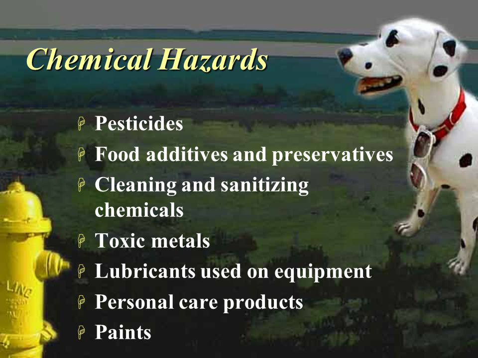 Chemical Hazards Pesticides Food additives and preservatives