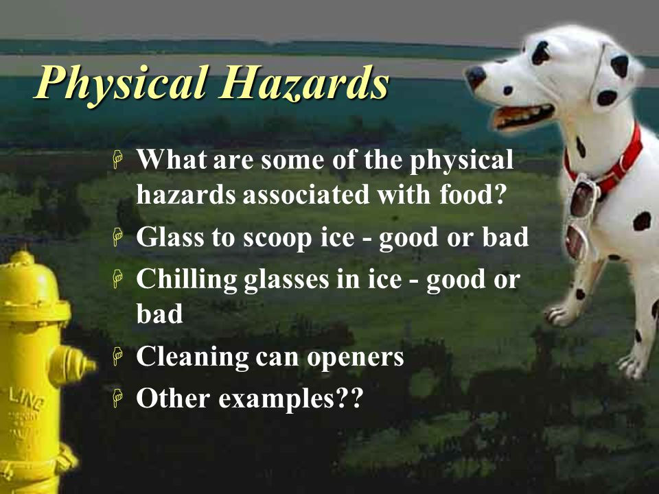 Physical Hazards What are some of the physical hazards associated with food Glass to scoop ice - good or bad.