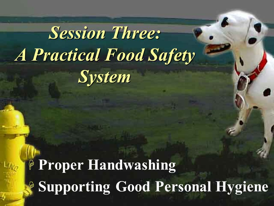 Session Three: A Practical Food Safety System