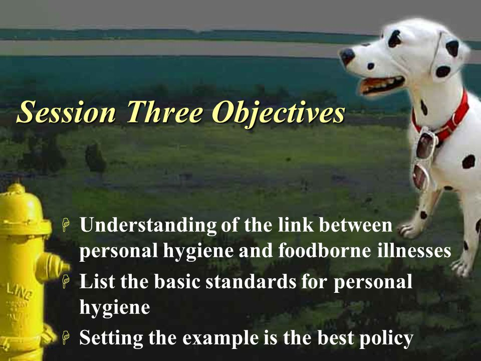 Session Three Objectives