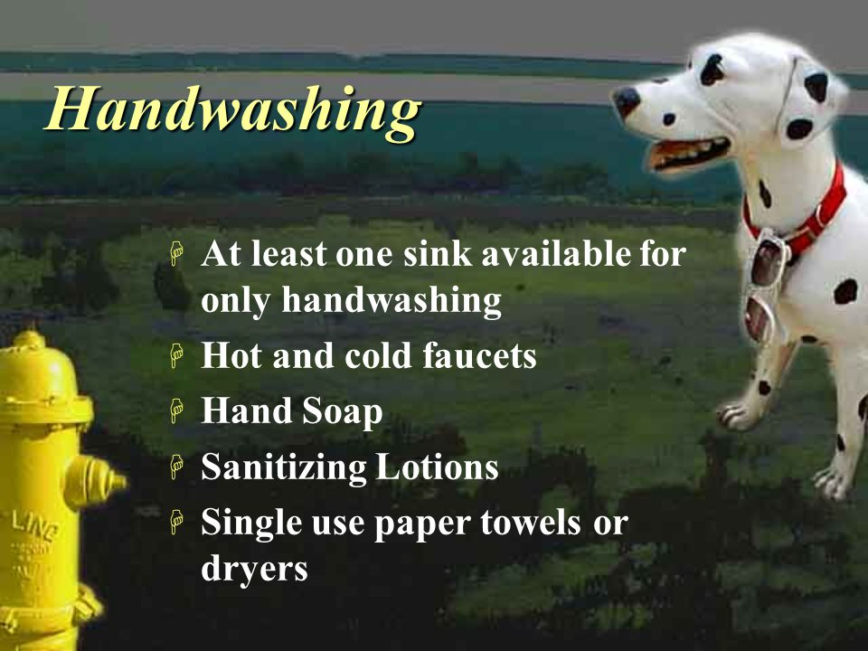 Handwashing At least one sink available for only handwashing