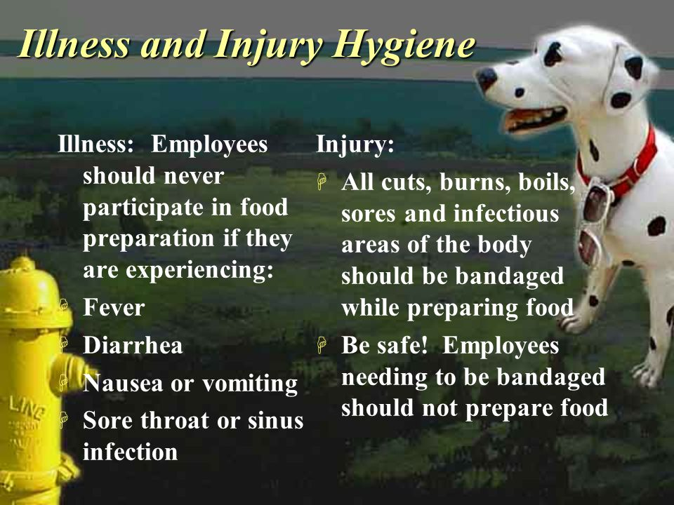 Illness and Injury Hygiene