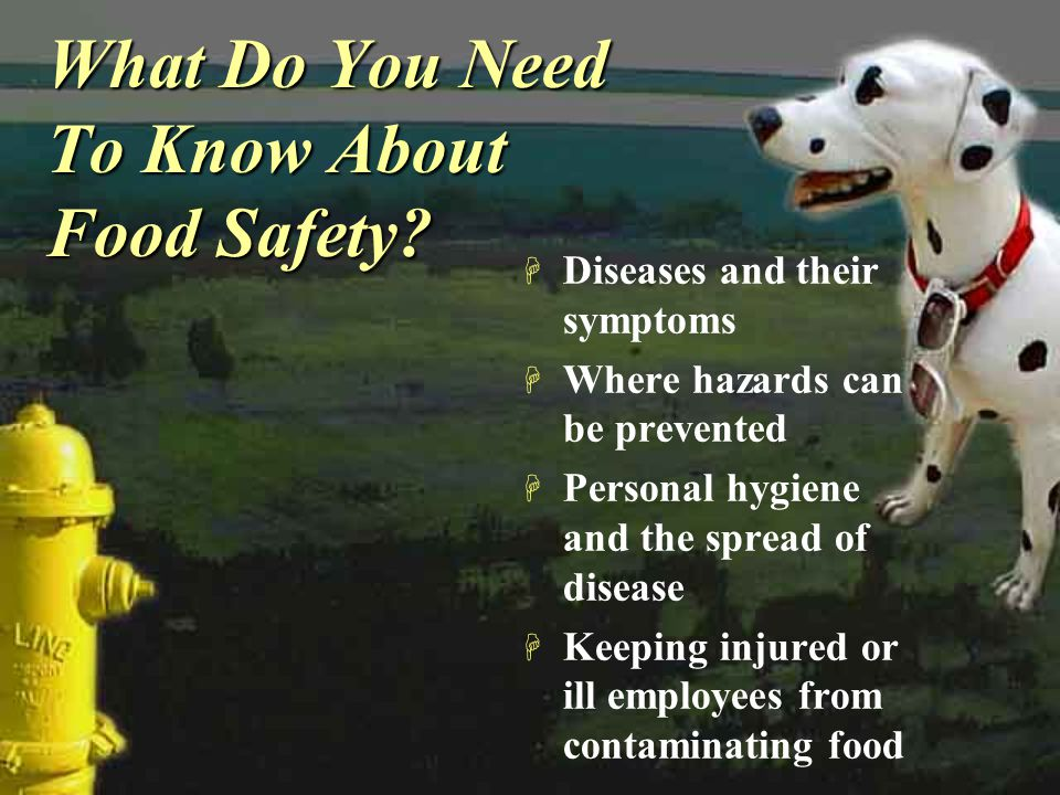 What Do You Need To Know About Food Safety