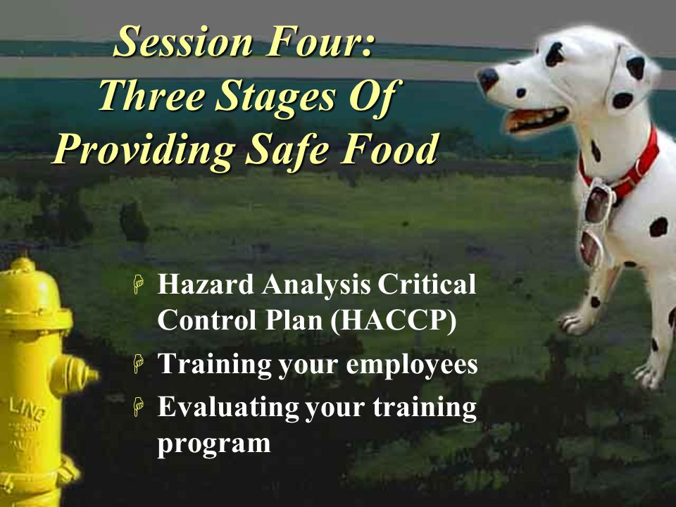 Session Four: Three Stages Of Providing Safe Food