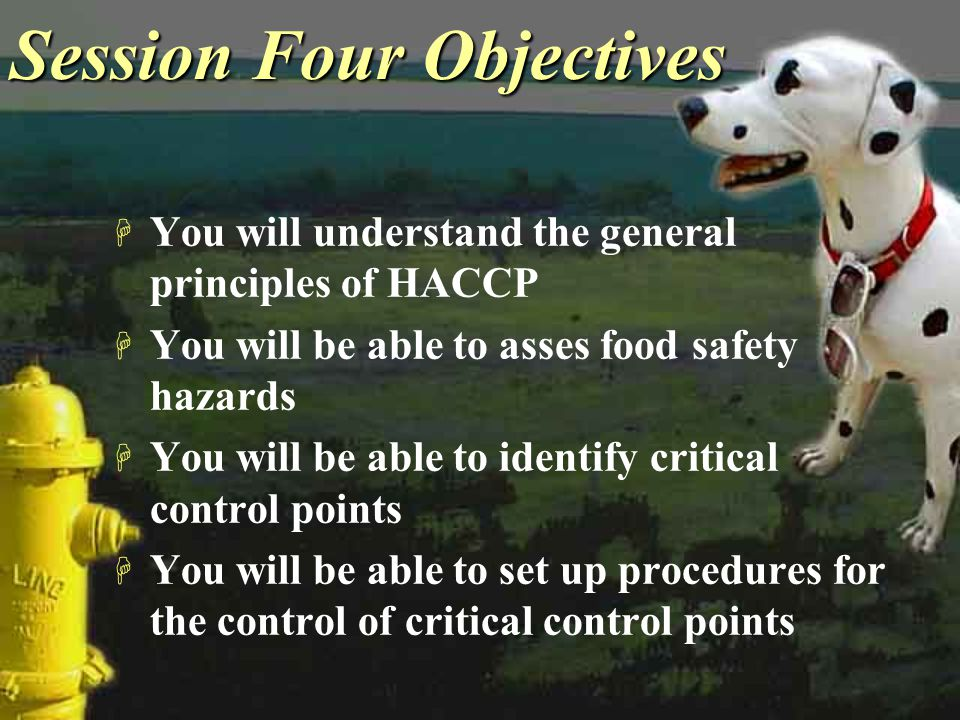 Session Four Objectives