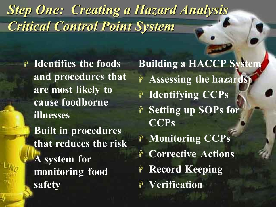 Step One: Creating a Hazard Analysis Critical Control Point System