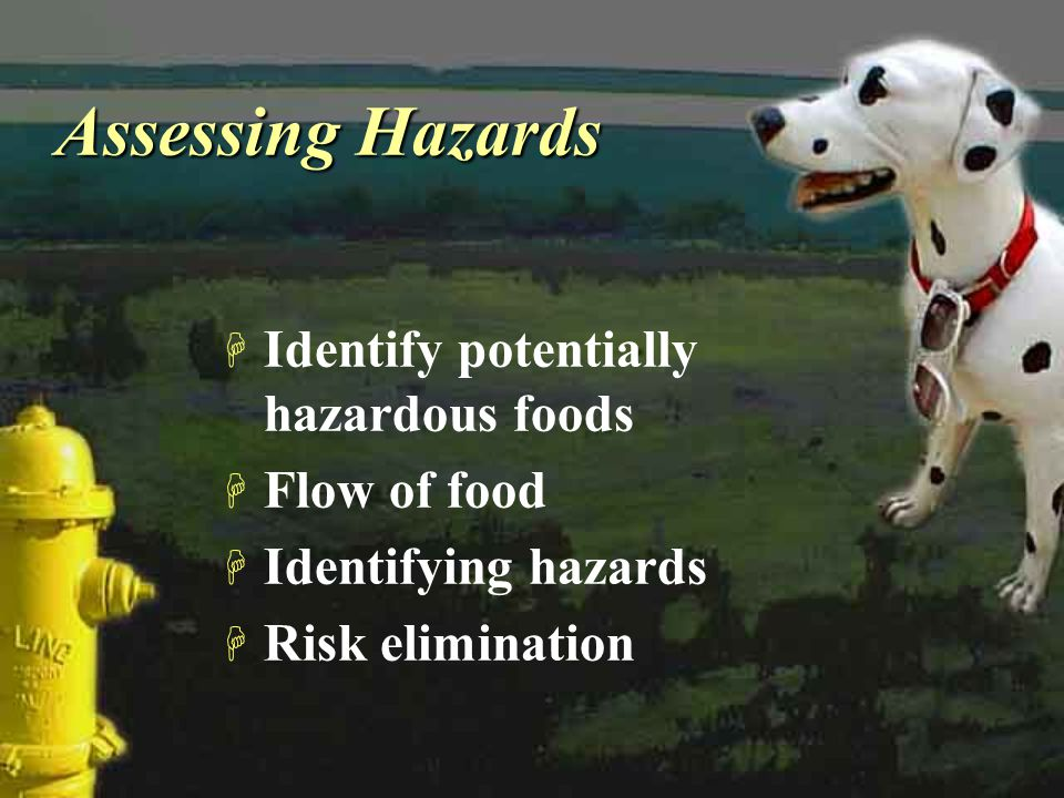 Assessing Hazards Identify potentially hazardous foods Flow of food