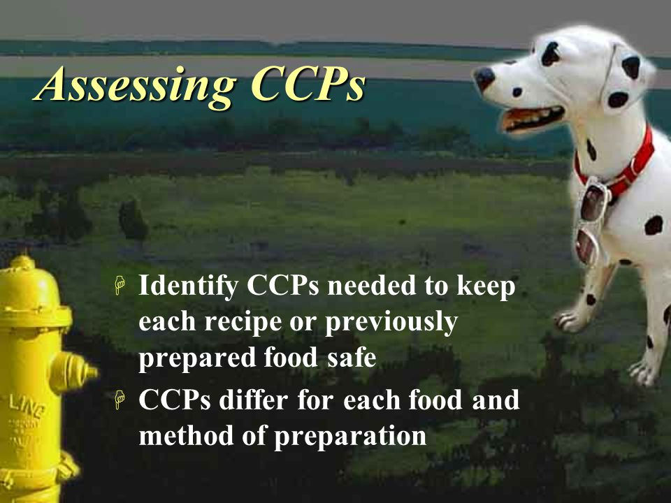 Assessing CCPs Identify CCPs needed to keep each recipe or previously prepared food safe.
