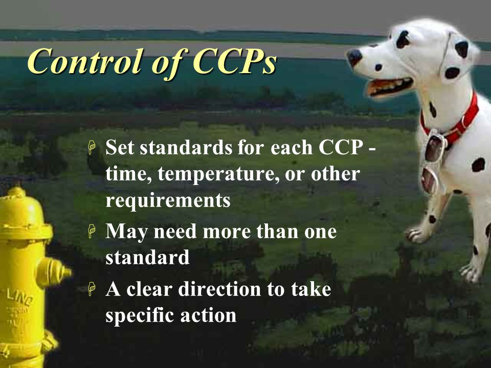 Control of CCPs Set standards for each CCP - time, temperature, or other requirements. May need more than one standard.