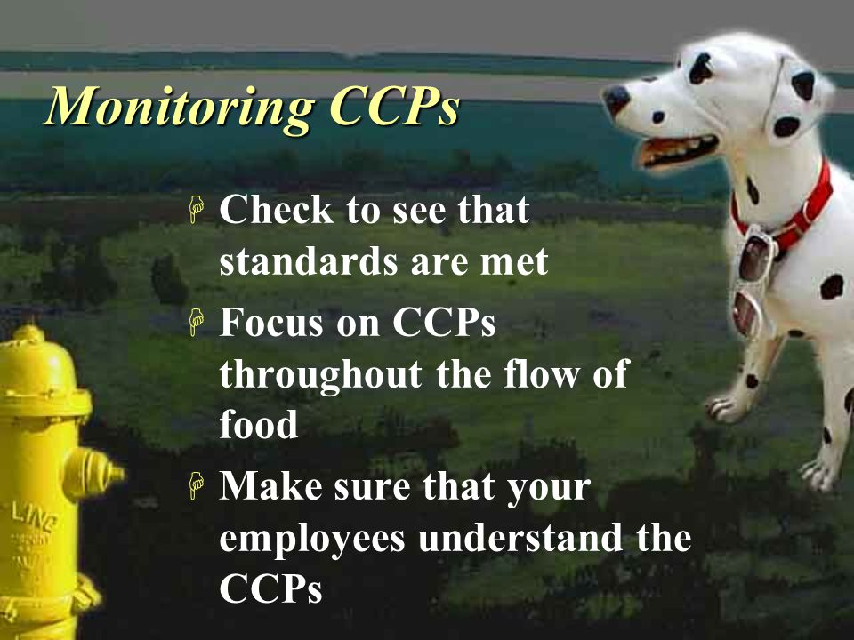 Monitoring CCPs Check to see that standards are met