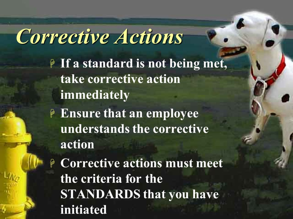 Corrective Actions If a standard is not being met, take corrective action immediately. Ensure that an employee understands the corrective action.