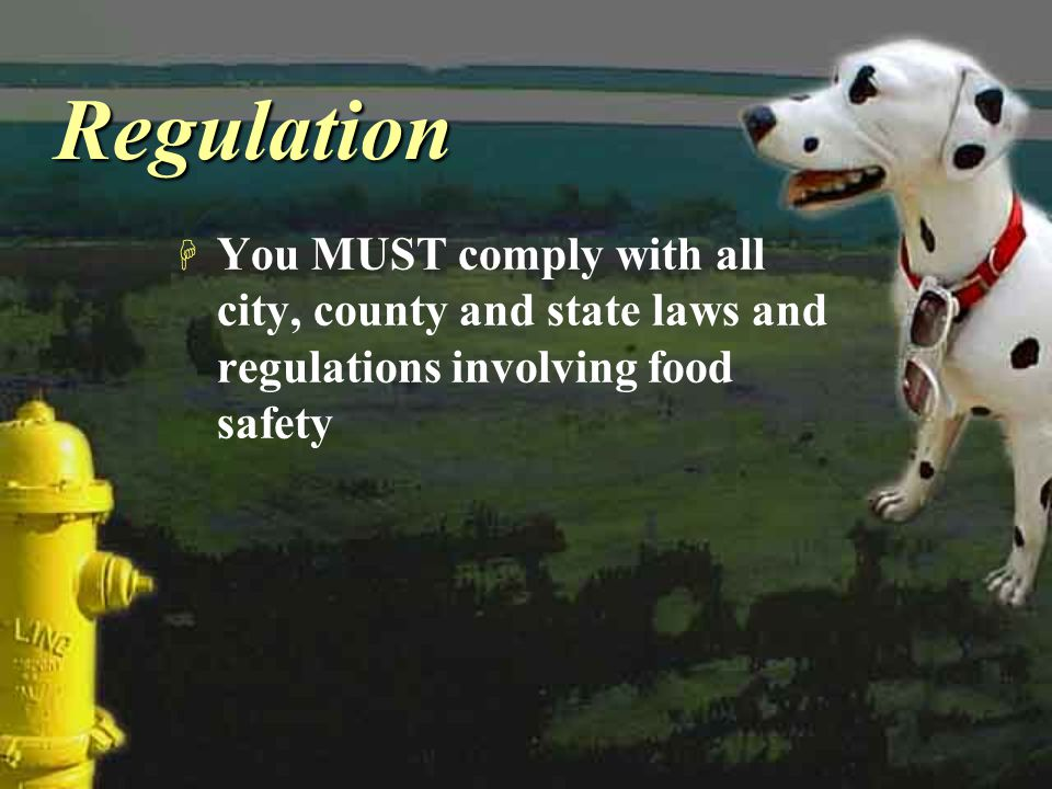Regulation You MUST comply with all city, county and state laws and regulations involving food safety.