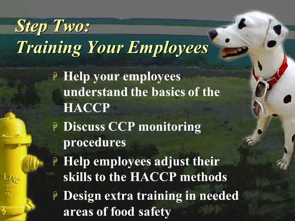 Step Two: Training Your Employees