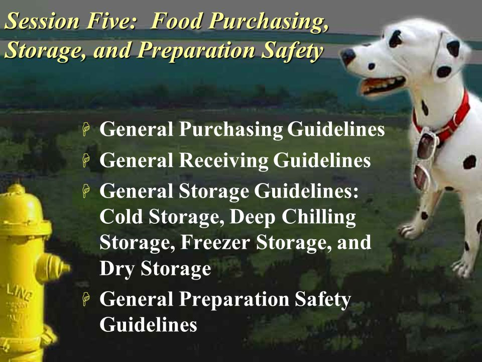 Session Five: Food Purchasing, Storage, and Preparation Safety