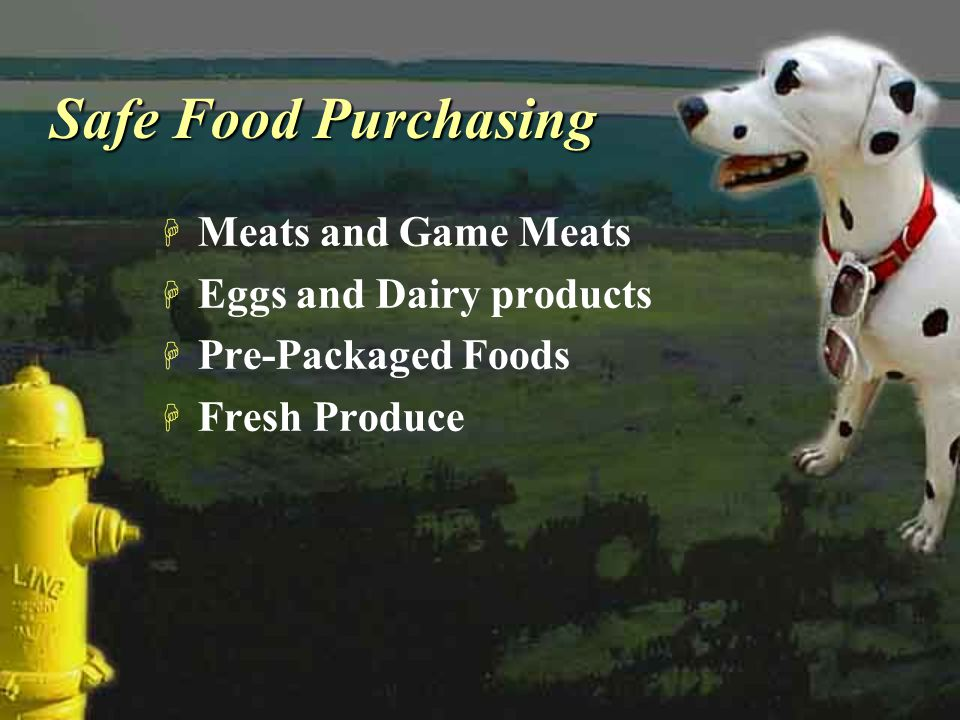 Safe Food Purchasing Meats and Game Meats Eggs and Dairy products