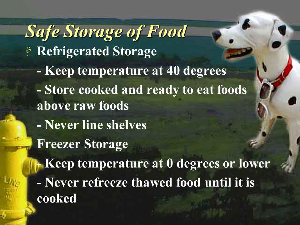 Safe Storage of Food Refrigerated Storage