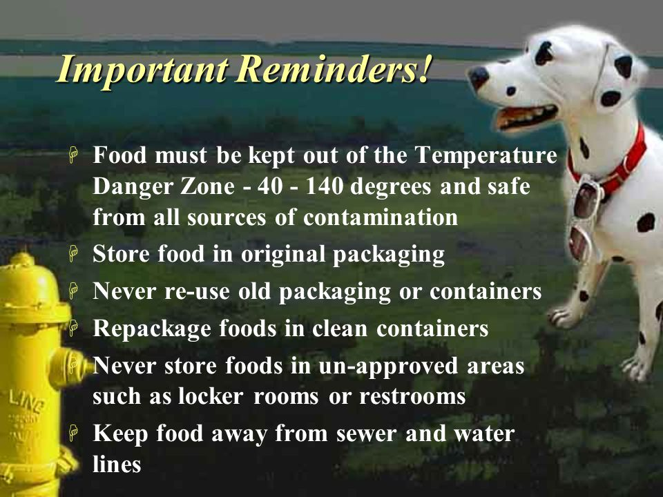 Important Reminders! Food must be kept out of the Temperature Danger Zone - 40 - 140 degrees and safe from all sources of contamination.