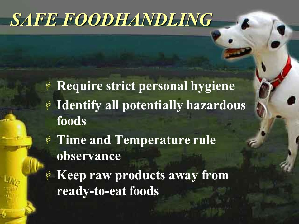 SAFE FOODHANDLING Require strict personal hygiene