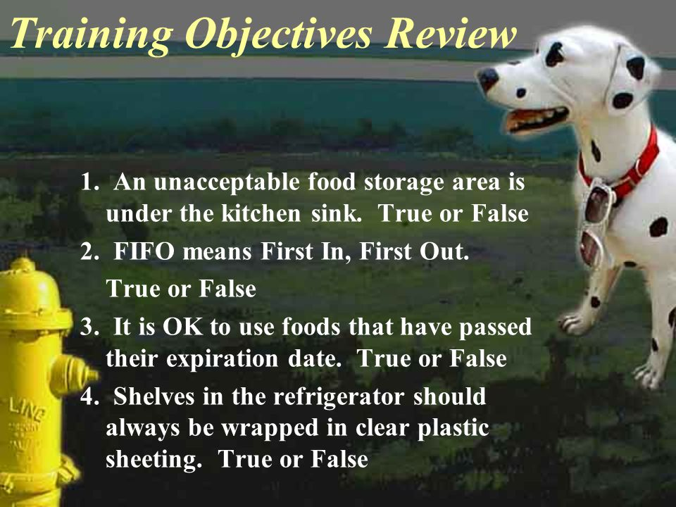 Training Objectives Review