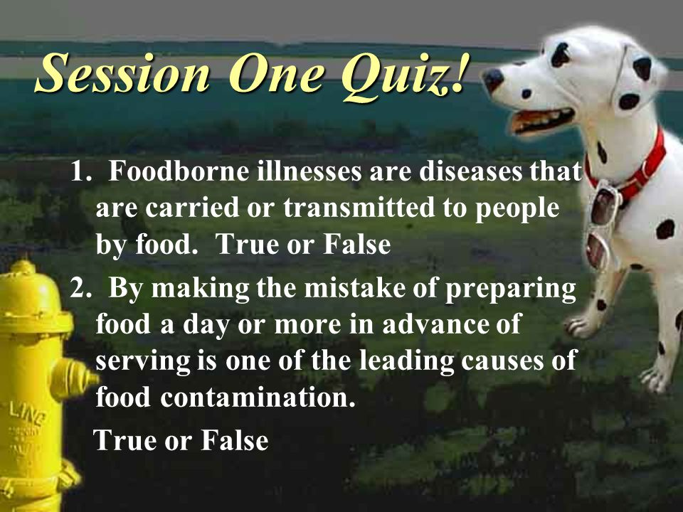 Session One Quiz! 1. Foodborne illnesses are diseases that are carried or transmitted to people by food. True or False.